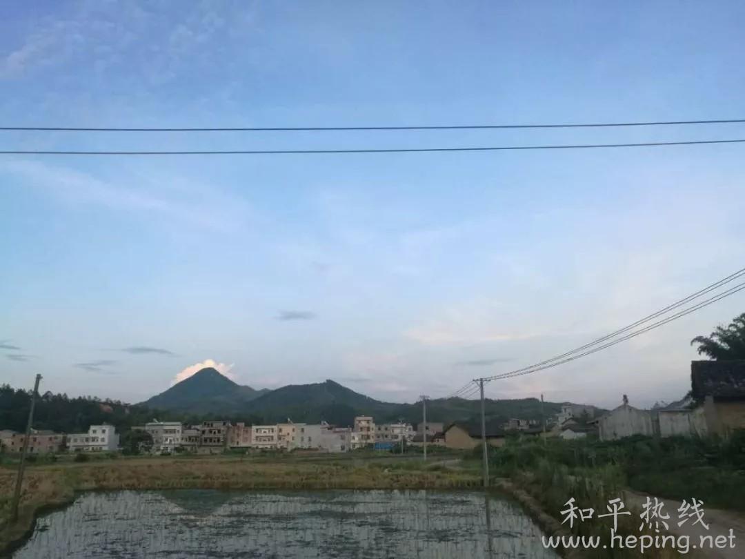 和平县风光.webp.jpg