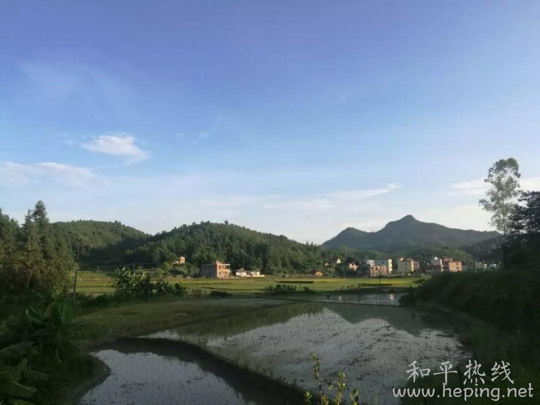 和平县秀河1.webp.jpg
