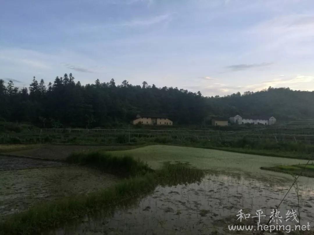 和平县秀河村3.webp.jpg