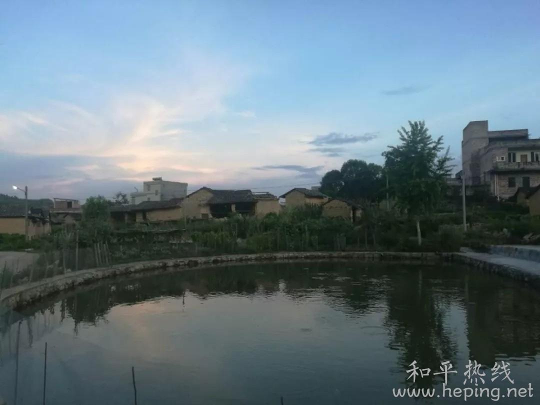 和平县长塘.webp.jpg